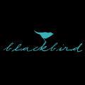 Blackbird Cafe logo